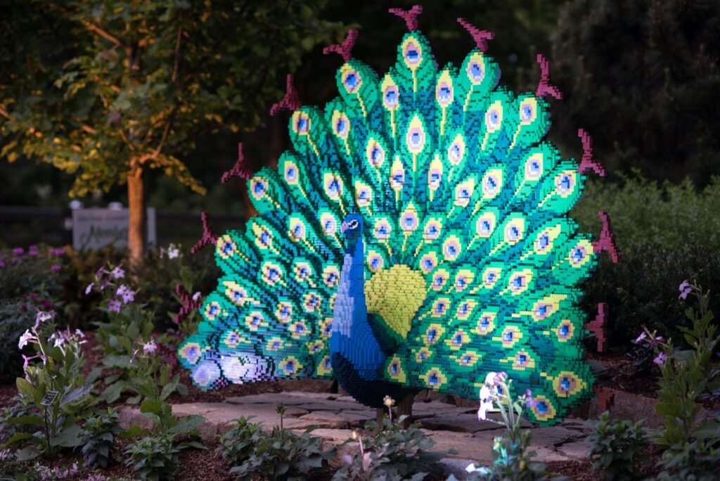 Peacock made of legos